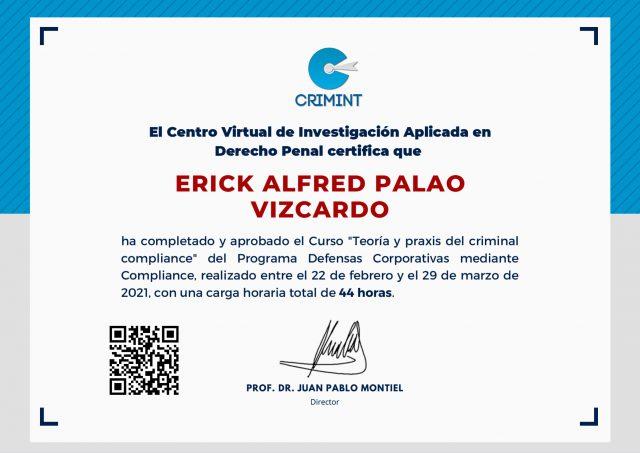 Erick-Alfred-Palao-Vizcardo
